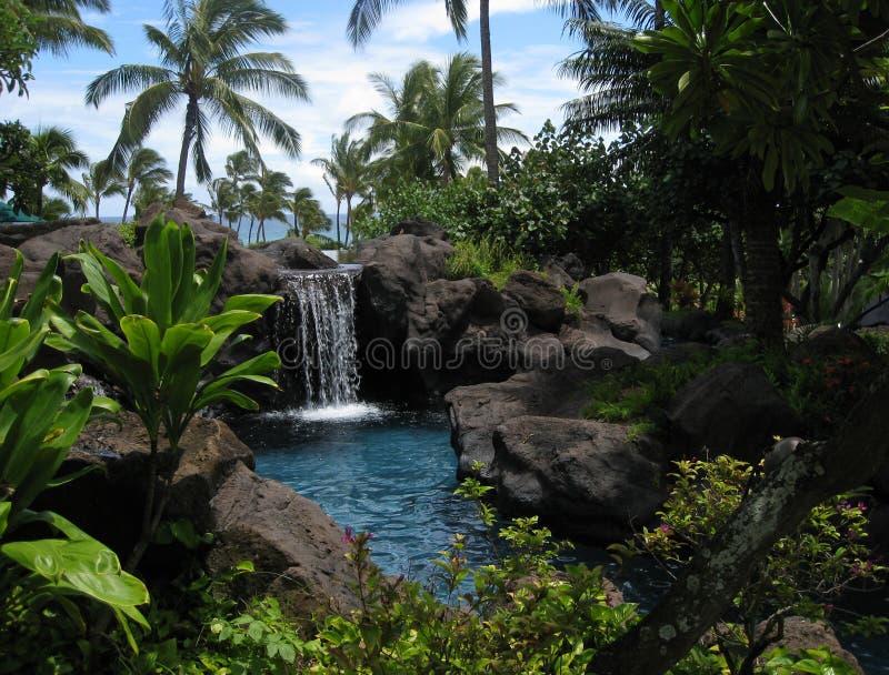 Lagune et cascade à écriture ligne par ligne tropicales images libres de droits