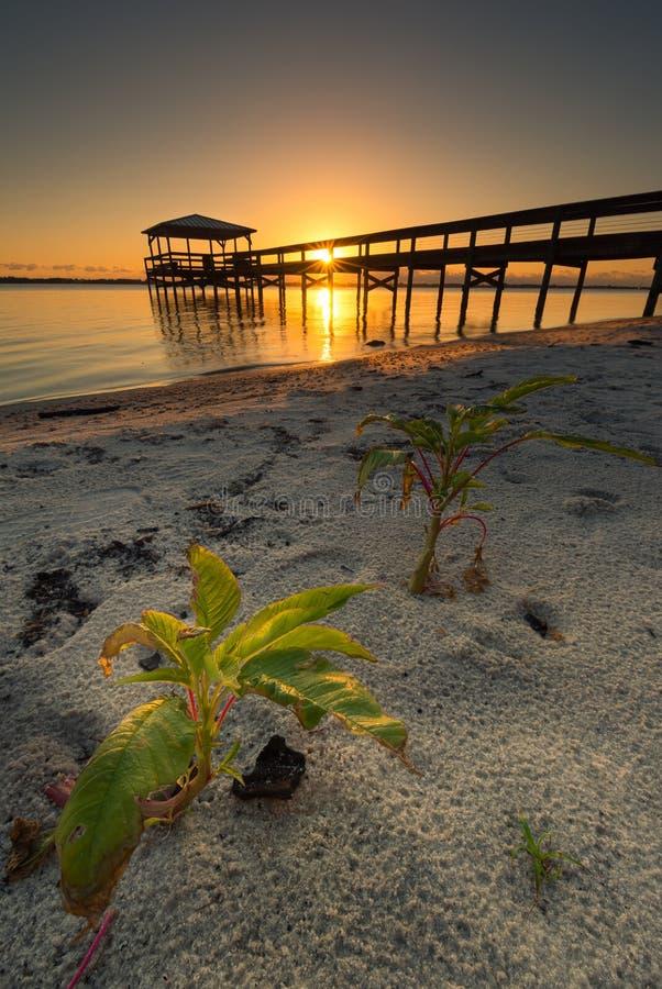 Lagune indienne de rivière, Melbourne, la Floride photographie stock libre de droits