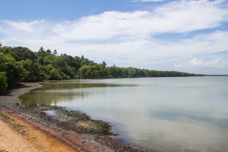 Lagune merveilleuse dans Tangalle, Sri Lanka image libre de droits