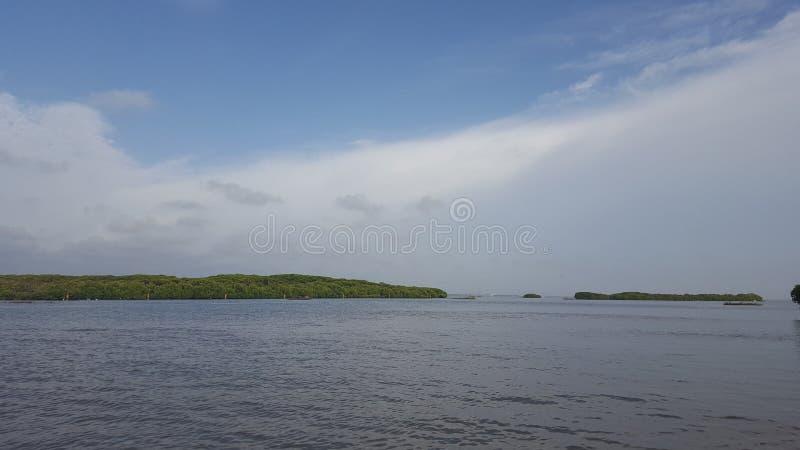 Lagune in Negombo in Sri Lanka royalty-vrije stock foto's