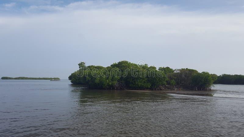 Lagune in Negombo in Sri Lanka royalty-vrije stock afbeeldingen