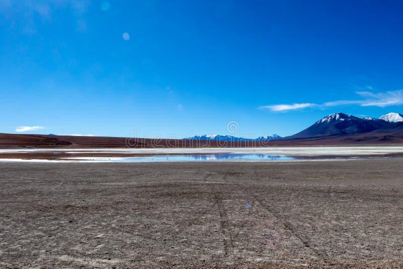 Lagune rouge colorée d'Altiplanic, un lac salin peu profond dans le sud-ouest de l'Altiplano de la Bolivie photo stock