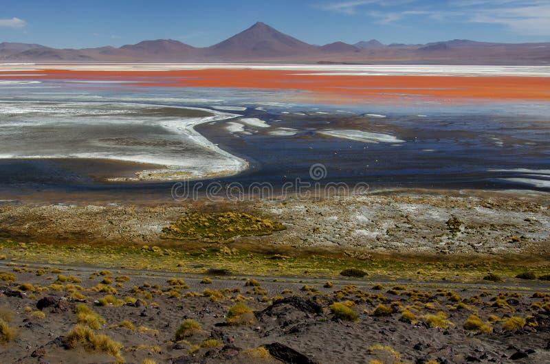 Lagune rouge dans les appartements de sel d'Uyuni photo libre de droits