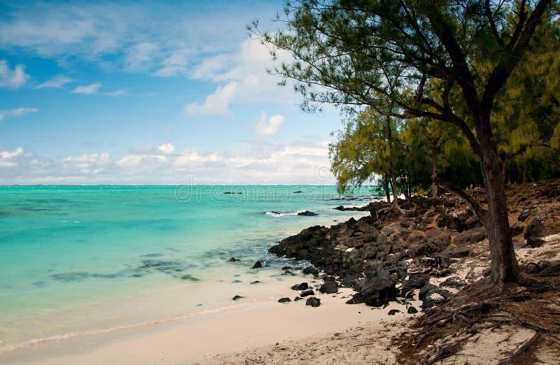 Lagune tropicale dans les cerfs aux. d'Ile photographie stock libre de droits