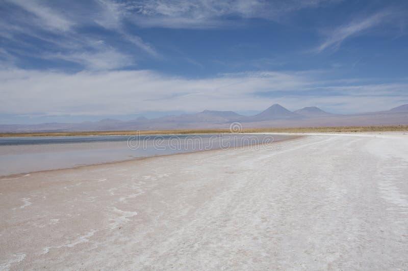 Lagunensalzwasser, Chile lizenzfreies stockbild