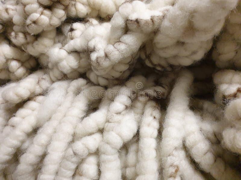 Laine de tapis ! chaud, blanc, doux, thik dans des couleurs naturelles images libres de droits