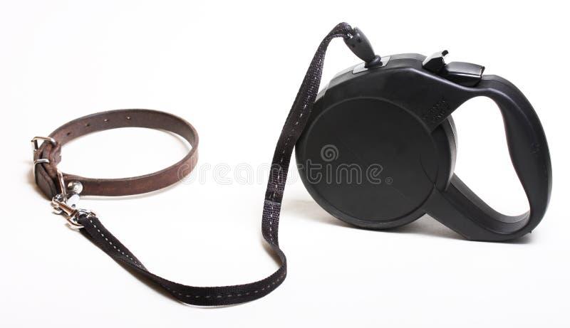 Laisse de crabot photographie stock libre de droits