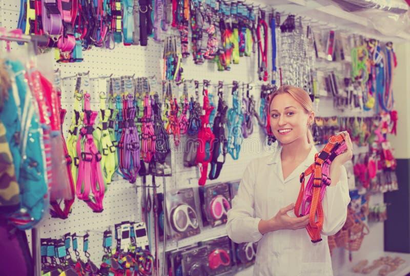 Laisses de offre d'animal familier de vendeuse de jeune femme photo stock
