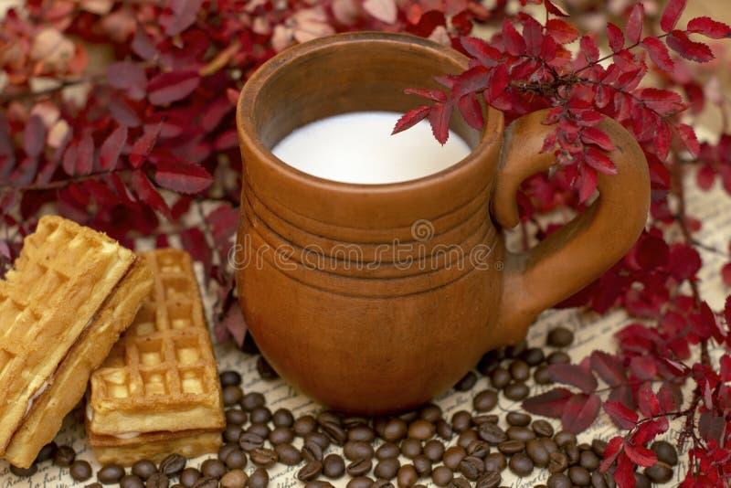 Lait de cacao dans une chope en grès faite main entourée par des usines d'automne de couleur rouge et des gaufres photographie stock