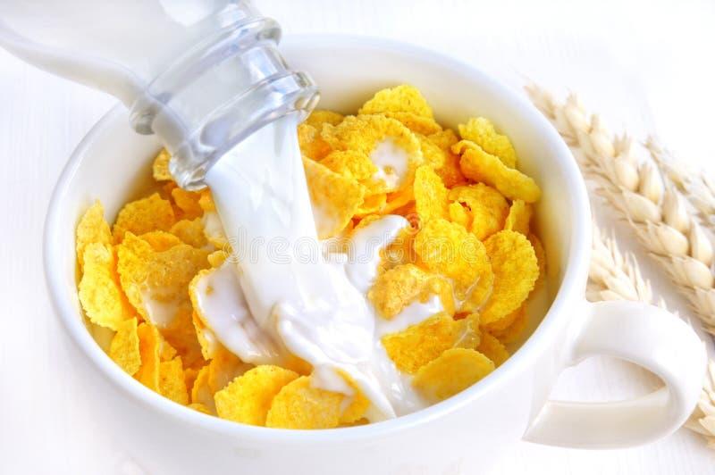 lait de cornflakes image libre de droits