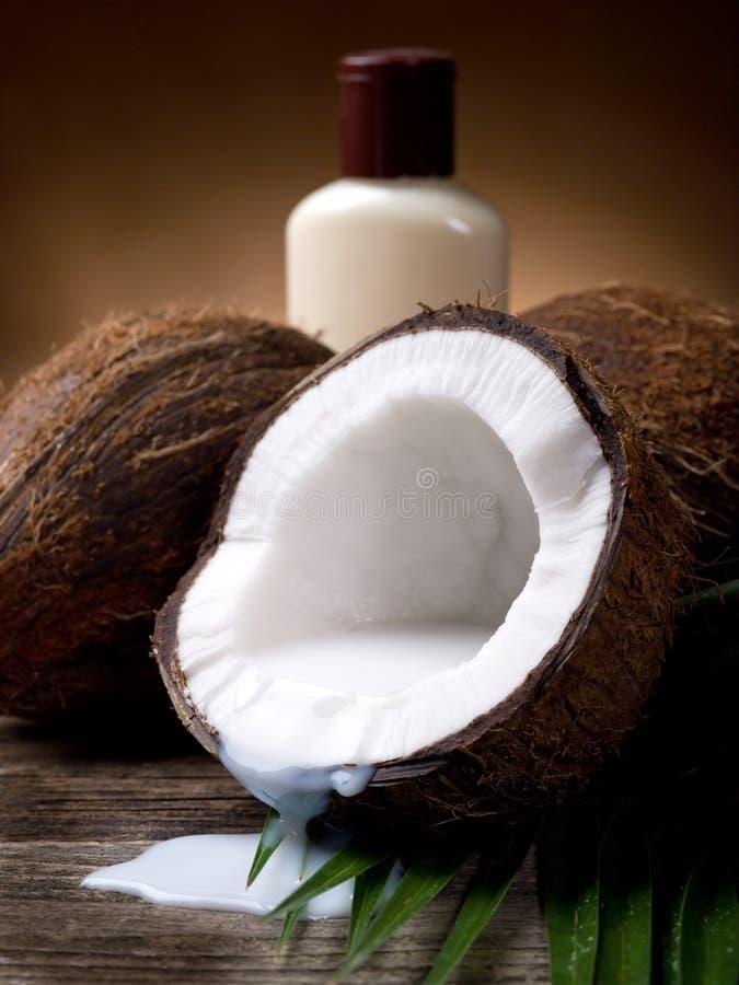 Lait de noix de coco images stock