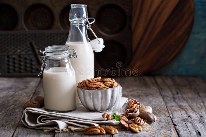 Lait de vegan de noix de pécan photographie stock libre de droits