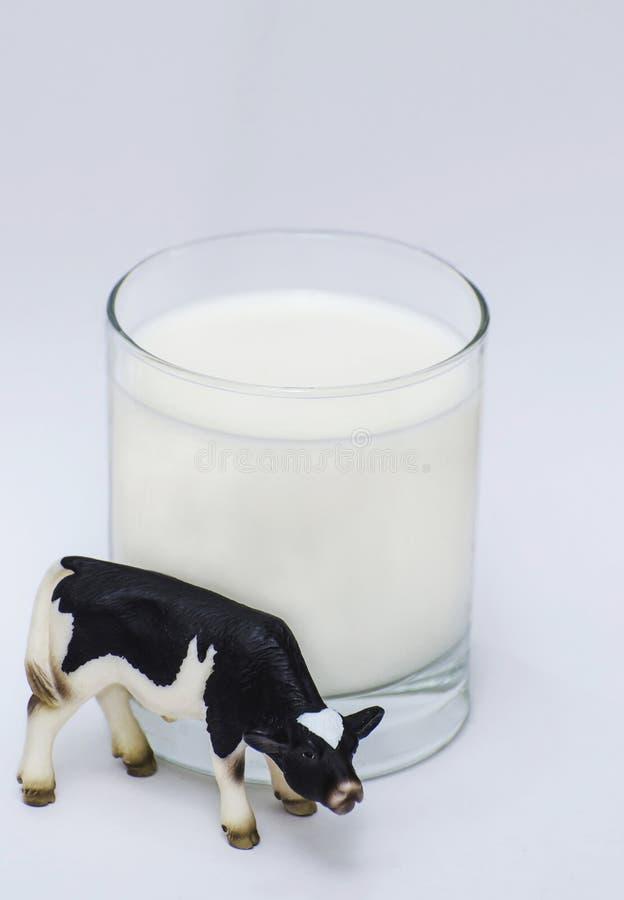 Lait et vache photographie stock