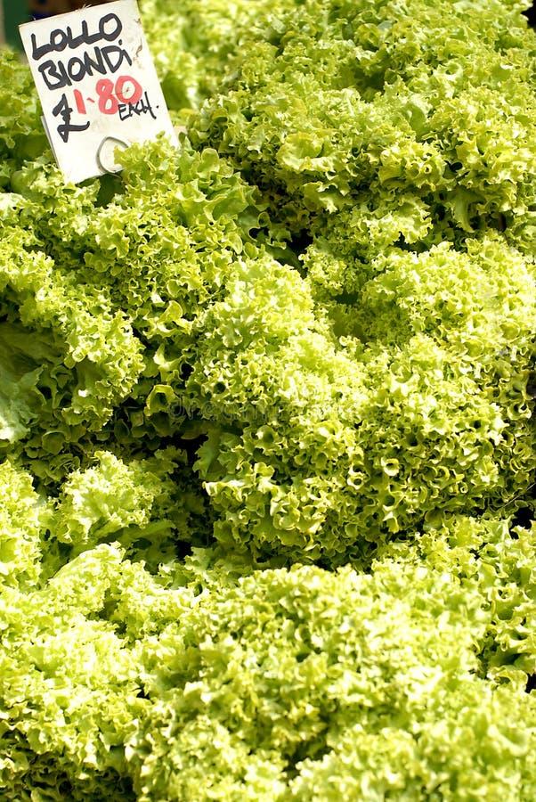 Laitue fraîche de salade à vendre photos stock