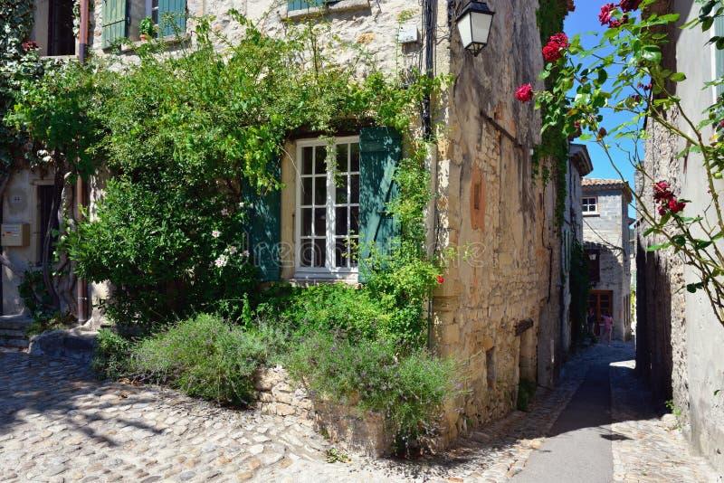 Laitue romaine de La de Vaison, Provence photos stock