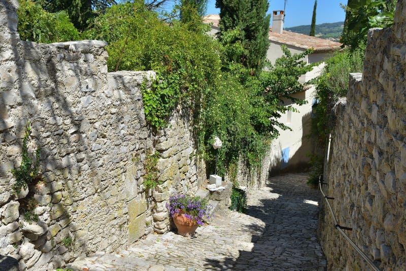 Laitue romaine de La de Vaison, Provence images libres de droits