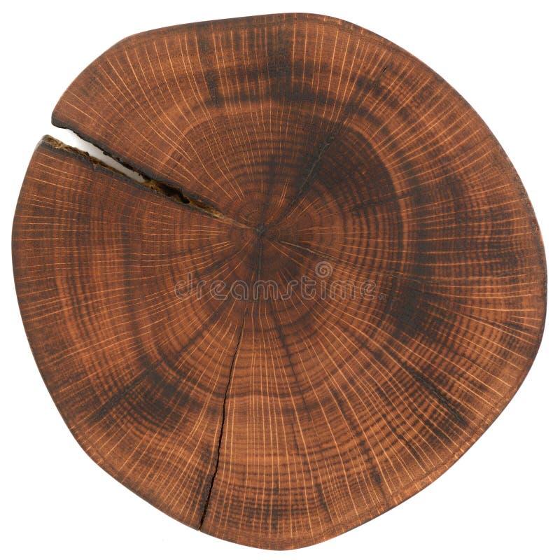 Laje da madeira de carvalho A folhosa textured a superfície com os anéis e as quebras isolados no fundo branco foto de stock royalty free