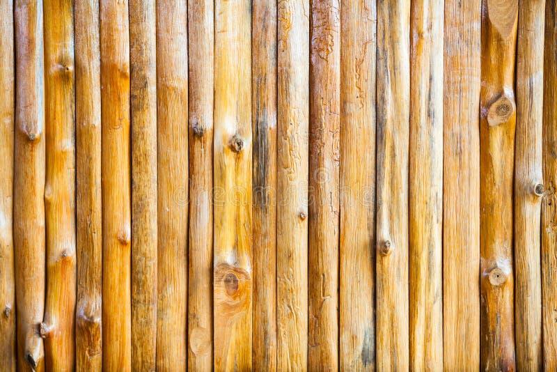 Laje de madeira, fundo de madeira da parede do log foto de stock
