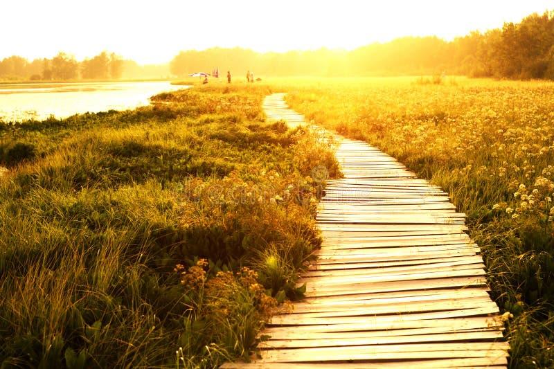 lake över solnedgångwalkwayen royaltyfria bilder