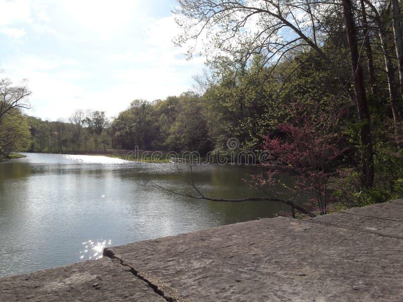 Lake1 стоковое фото rf