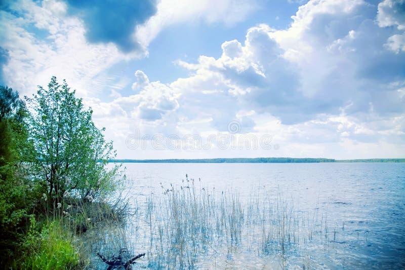 Download Lake Royalty Free Stock Photography - Image: 10014437