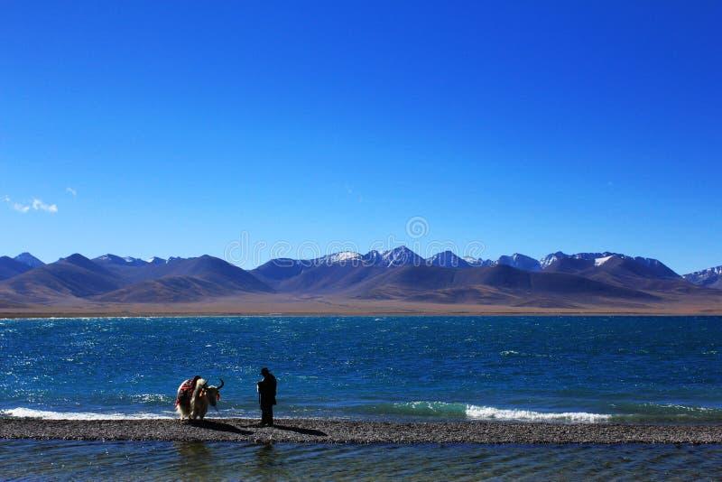 Download Lake fotografering för bildbyråer. Bild av tibetant, rent - 27286591