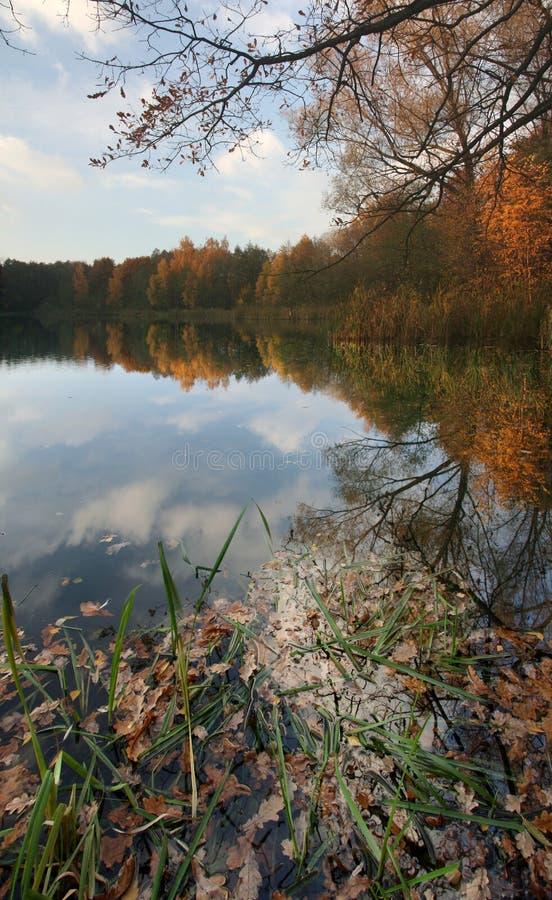 Lake. On coast of lake, vertical panorama stock image