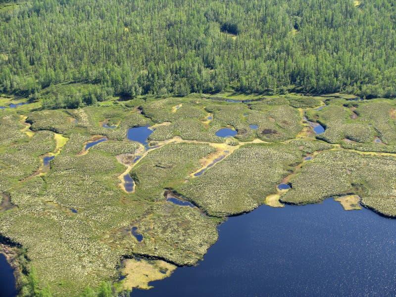 Lake Royaltyfri Foto