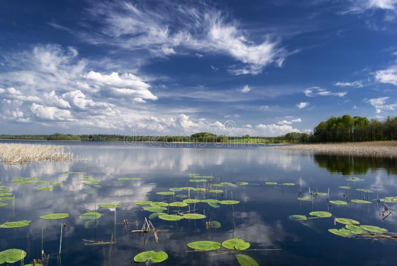 Lake. stock image