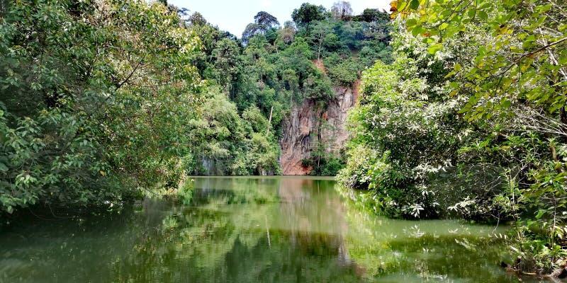 Lake at Bukit Batok nature park. Lake at abandoned quarry. Lake at disused quarry. In Bukit Batok nature park in Singapore stock image