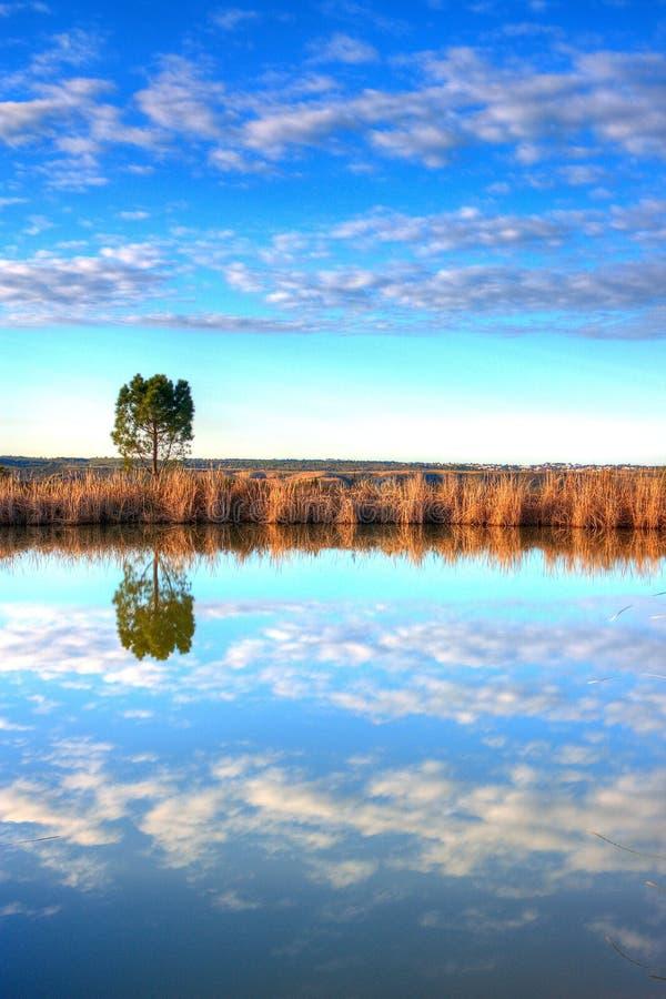 Lake in Alentejo. stock photography