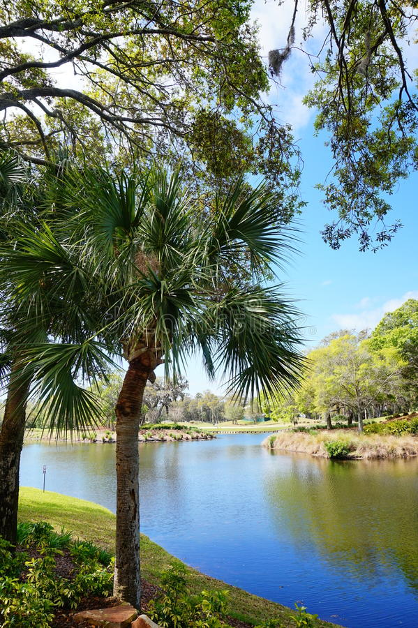 Free Lake And Tree In A Resort Stock Photography - 94513692