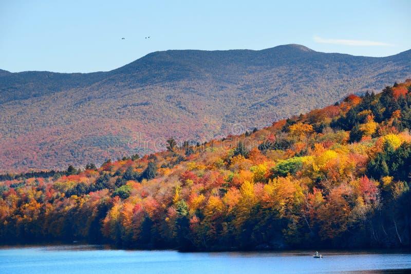 Lake Autumn Foliage royalty free stock photos