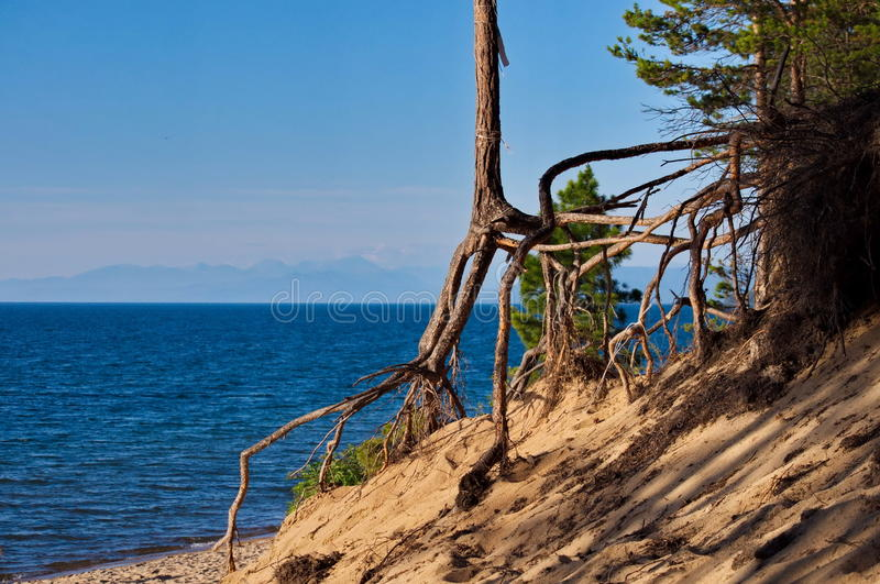 Lake Baikal. Is the largest fresh lake in the world royalty free stock photos