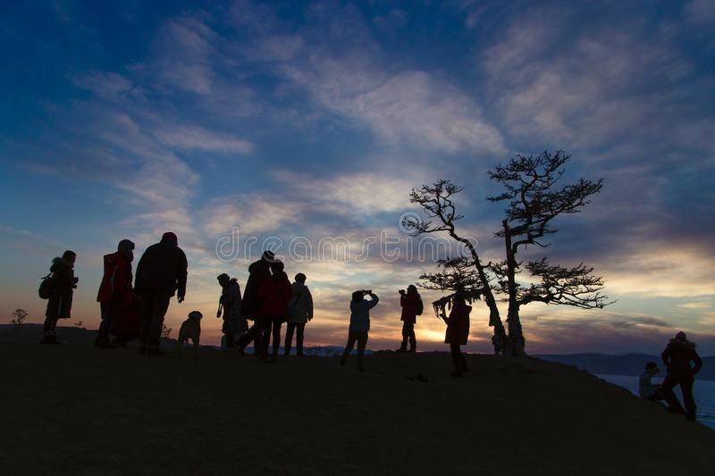 On Lake Baikal a lonely tree against the sky during sunset with people silhouette.  royalty free stock photos
