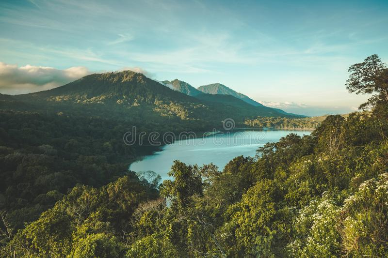 The lake Batur among the wild nature. Bali. The lake Batur surrounded by the greens and volcano. Bali island, Indonesia. Picturesque overview of the water royalty free stock images