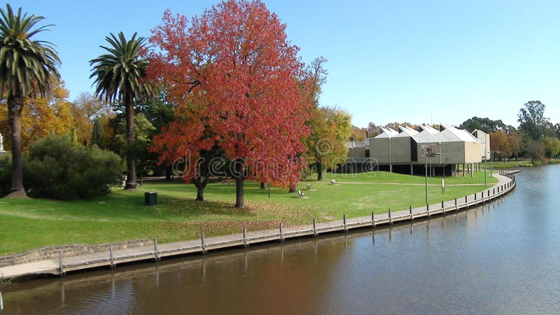 Lake Benalla royaltyfria bilder