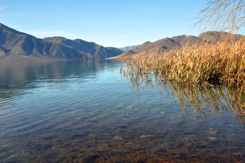 Lake Benmore & Raupo, Otago, New Zealand royaltyfri foto