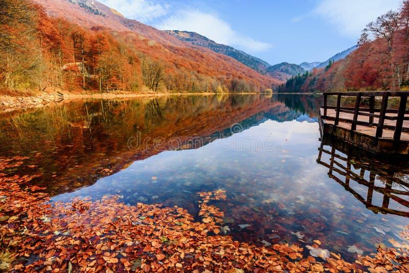 Lake Biograd (Biogradsko jezero), Biogradska Gora national park. In autumn, Montenegro stock image