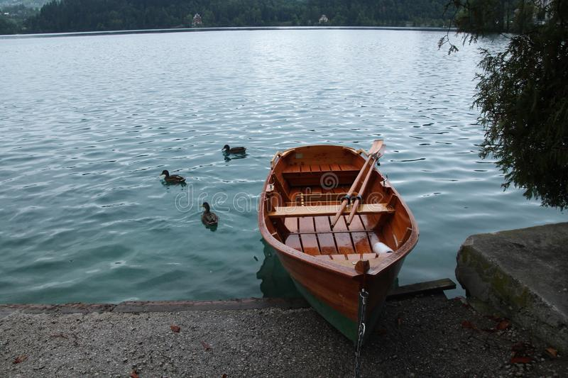 Lake bled, Slovenia a boat and ducks cloudy summer day royalty free stock images