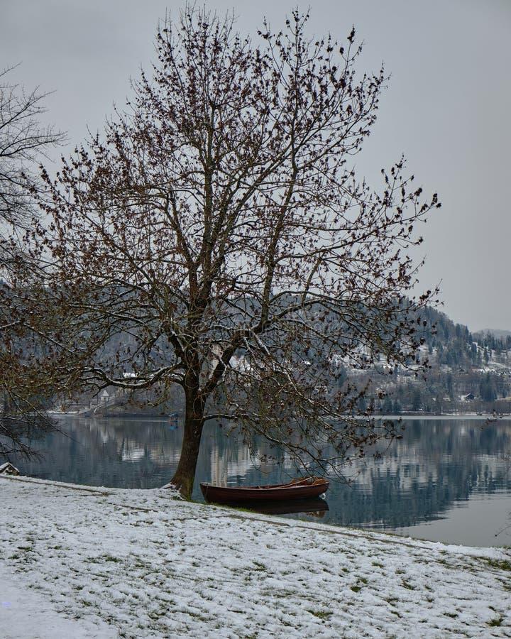 Lake Bled Slovenia. royalty free stock photo