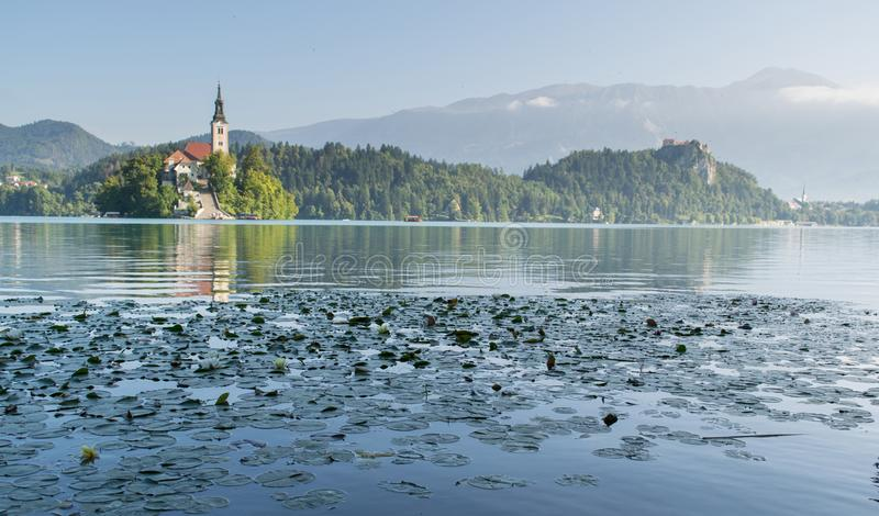 Lake Bled with St. Marys Church of Assumption on small island royalty free stock photos