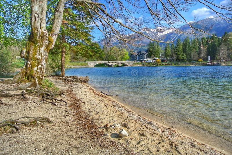 Lake Bohinj arkivfoton