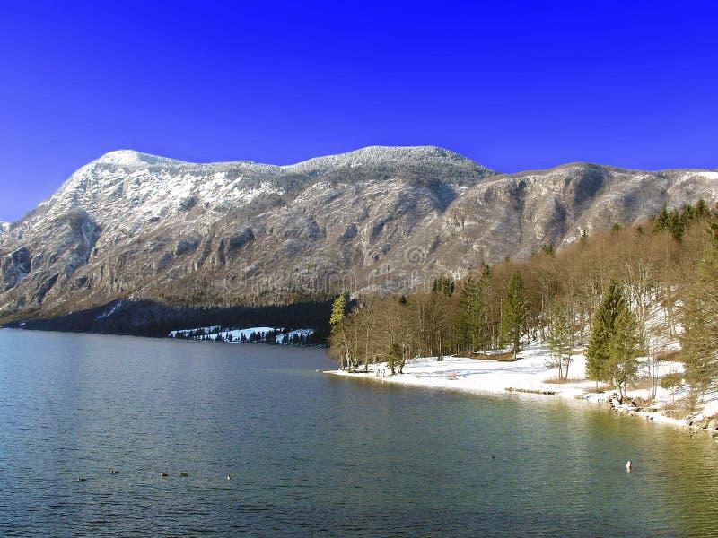 Download Lake Bohinj. Julian Alps. Slovenia Stock Image - Image: 18355901