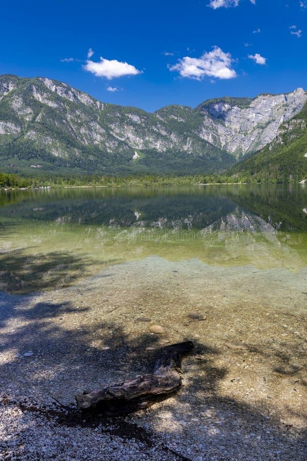 Lake Bohinj in Triglav national park, Slovenia stock images