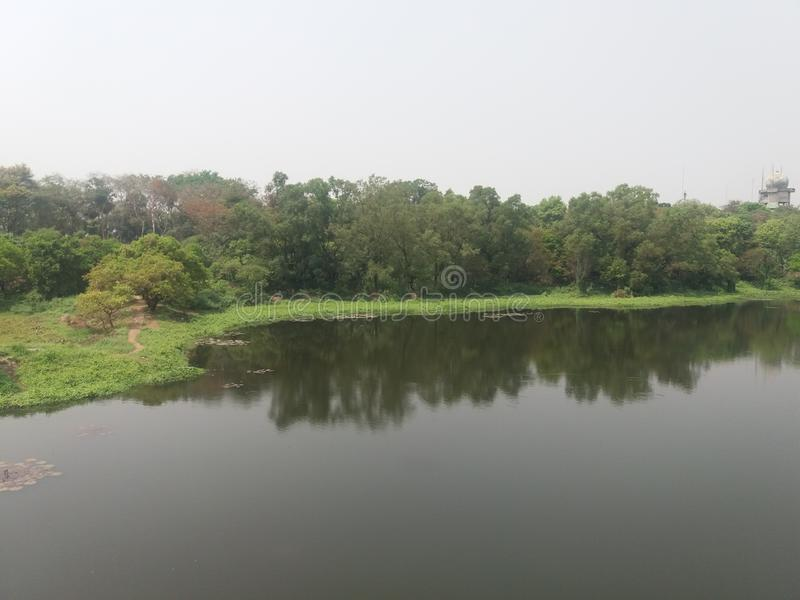 This is a lake in botanical garden iin dhaka,  Bangladesh. This is a lake in botanical garden in dhaka, Bangladesh stock photos