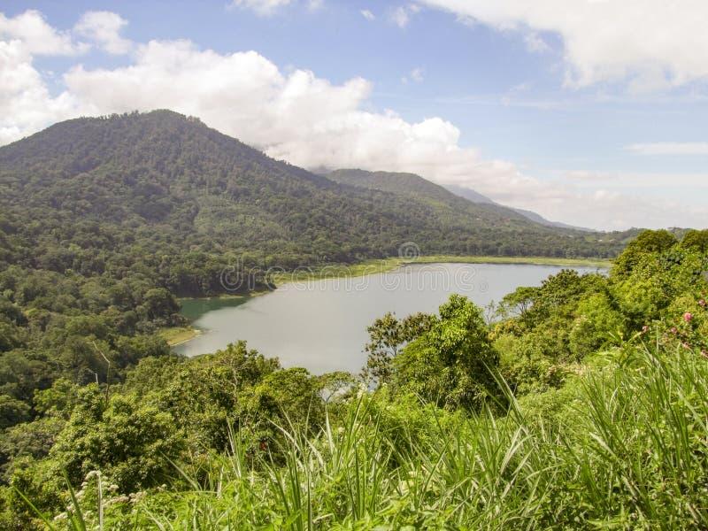 Lake Buyan in Bali. Lake Buyan, a caldera lake at Bali, a island of Indonesia royalty free stock images