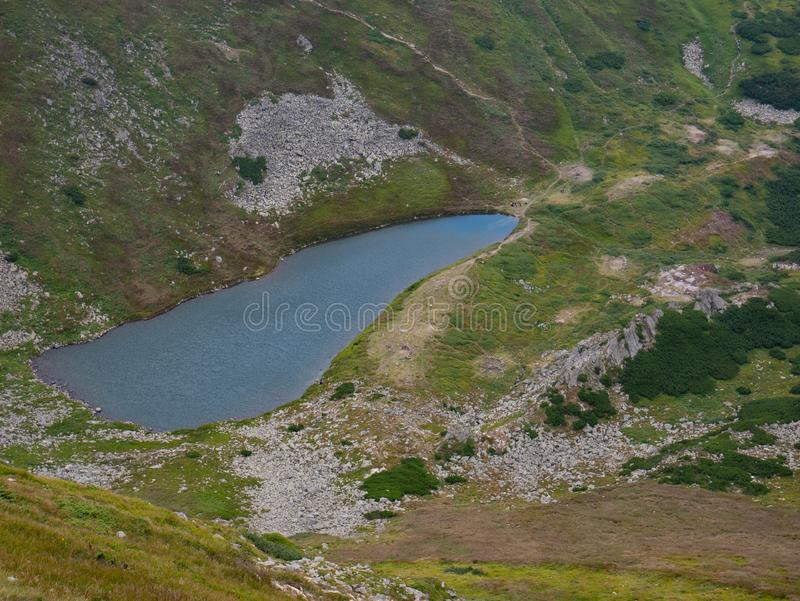 Lake in the Carpathians in the summer sunny day royalty free stock photos