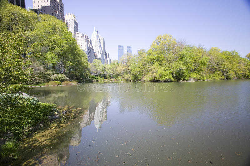 Lake in Central Park in Spring with New York City skyline in background, New York royalty free stock photo