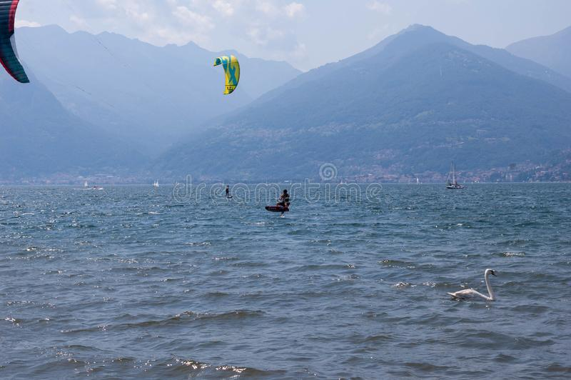 Lake Como, Italy - July 21, 2019. Water sport: kitesurfers surfing the wind on waves and swimming swan on bright sunny summer day. Near the Colico, town in stock photo